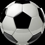 Euro Football 2016 Icon