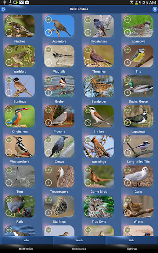 Screenshot for Bird Id - British Birds in Hong Kong Play Store