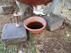 Photo: worm tea, coming out.  a második kád kifolyója