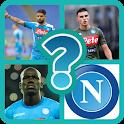 Napoli-Indovina Il Calciatore icon