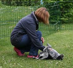 Photo: die Ellie freut sich sehr über Besuch (vor allem wenn es das künftige Frauchen ist)