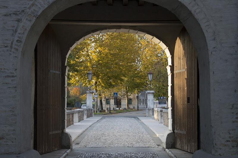Autunno alle porte di francifiol