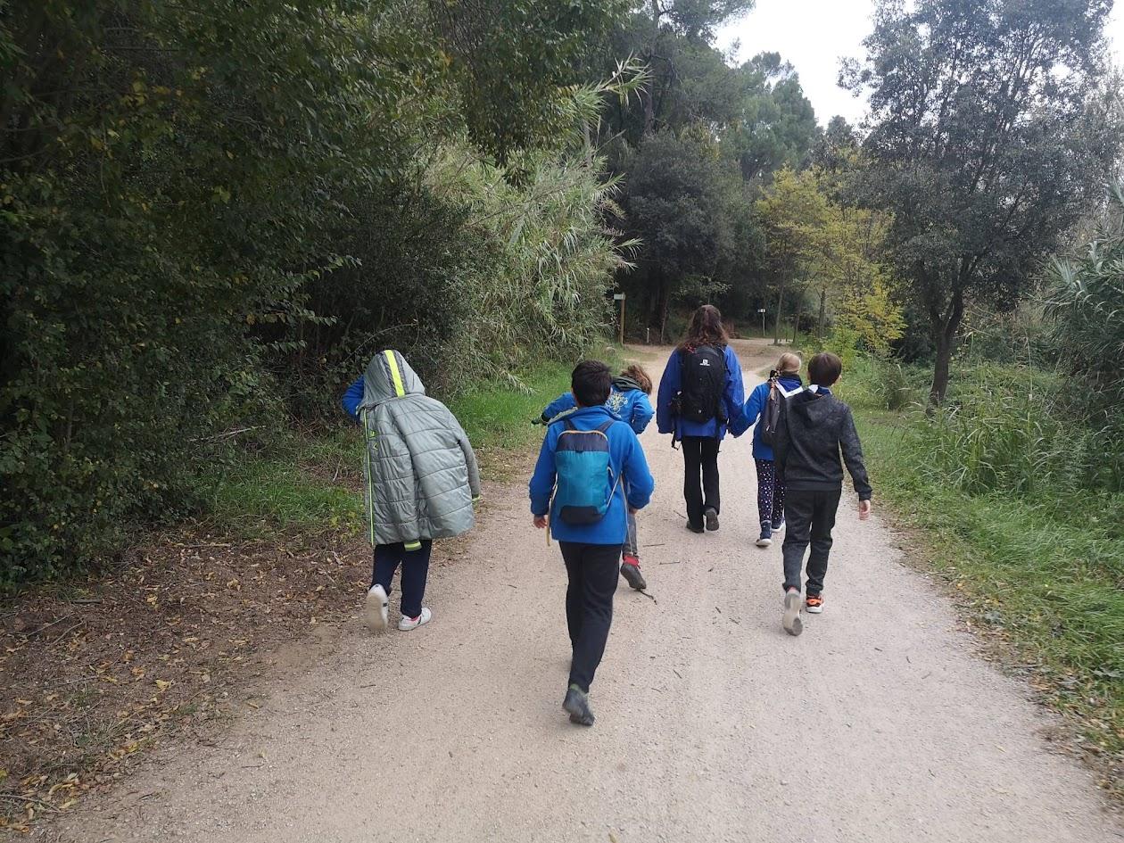 Excursió Grans Bosc Santiga '19