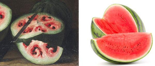 Toca Comer. Comparación entre una sandía actual y otra en el Renacimiento. Marisol Collazos Soto, Rafael Barzanallana