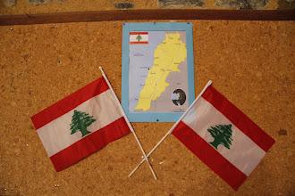 Photo: REPAS LIBANAIS