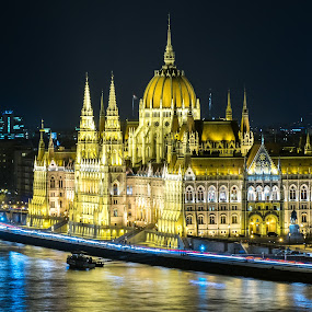 Hungarian parliament by night by Péter Mocsonoky - Buildings & Architecture Public & Historical ( famous, old, reflection, europe, gothic, neo-gothic, travel, cityscape, architecture, capital, danube, panorama, city, riverside, style, government, evening, light, water, hungary, budapest, building, national, twilight, beautiful, art, tourism, hungarian, parliament, urban, landmark, architectural, night, view, town, river )