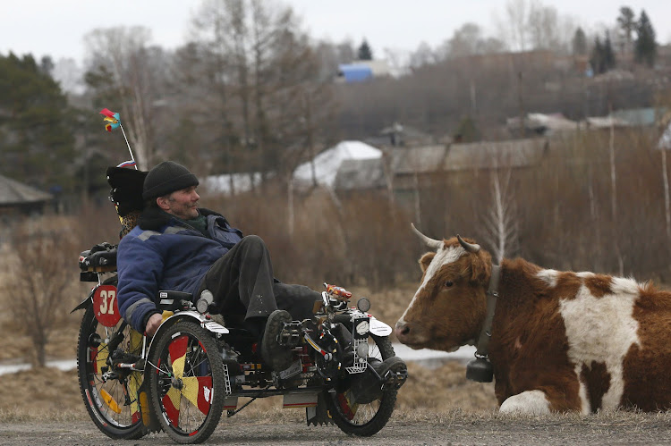 Local resident Alexey Seryogin, 50, rides a three-wheeled velomobile which he made himself on his own design, past a cow in the Siberian village of Balakhta, in Krasnoyarsk region, Russia.
