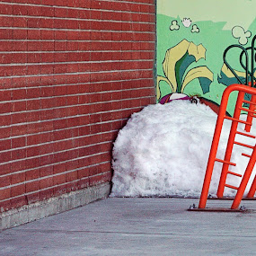 Tough Carrots by Julio Cardona - Artistic Objects Other Objects ( abstract, brick wall, alaska, art, bike rack, architecture, mural, winter, cold, food, fairbanks, snow, carrots )