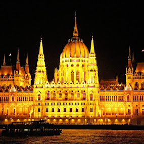 Parliament Building, Budapest, Hungary by Andie Andros - Buildings & Architecture Office Buildings & Hotels ( hungary, budapest, the viewing deck )