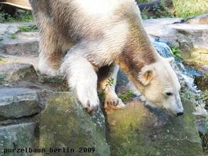 Photo: Unfassbar - jetzt geht die auch noch baden ;-)