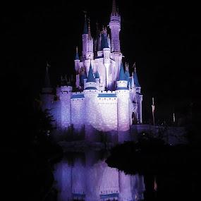 Cinderella's Castle at night by Joe Spandrusyszyn - Buildings & Architecture Other Exteriors ( pwcarcreflections, walt disney world, water, reflection, theme park, castle, disney, cinderella,  )