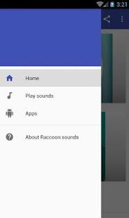 Raccoon sounds - náhled