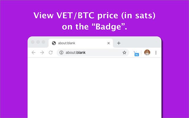 VeChain Price Checker
