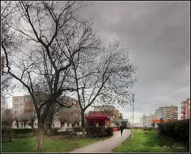 Photo: Calea Victoriei, alee Mr.2 - 2017.12.16