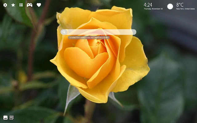 Yellow Roses Wallpaper & Yellow Flowers Theme