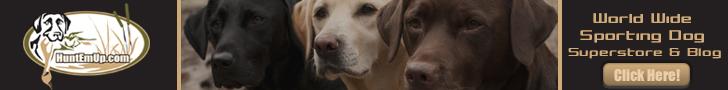 Sporting Dog Super Store & Blog