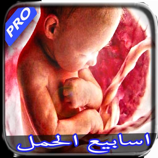 اسابيع الحمل - وجنس الطفل