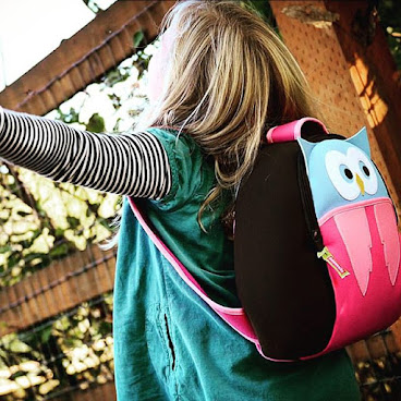 Owl Dabbawalla Bag