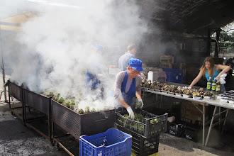 Photo: roasting artichokes