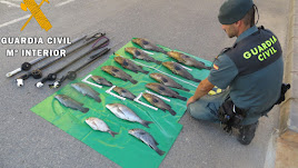Especies capturadas ilegalmente en Cabo de Gata.