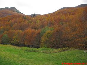 Photo: IMG_4130 i colori dell autunno sull appennino reggiano al rifugio San Leonardo