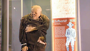 Yeti, Roswell and Mummies thumbnail