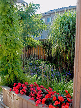 Photo: Planters built into decks allow for annuals and season-long bright colour to enhance a landscape.