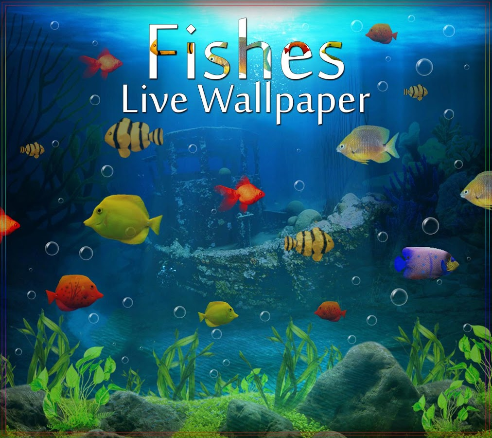 Fishes live wallpaper 2017 android apps on google play for Wallpaper fish in water