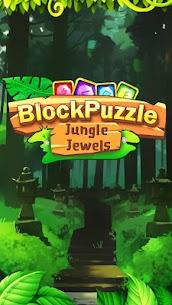 Block Puzzle Rune Jewels Mania 9