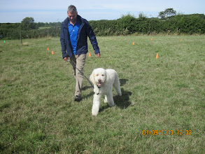 Photo: Paul and Alan Labradoodle