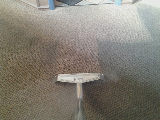 Absolute Carpet & Upholstery Cleaning LLC on Google