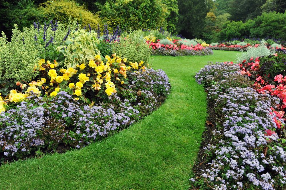 Tuinrenovatie / bedrijfstuinen/ onze services