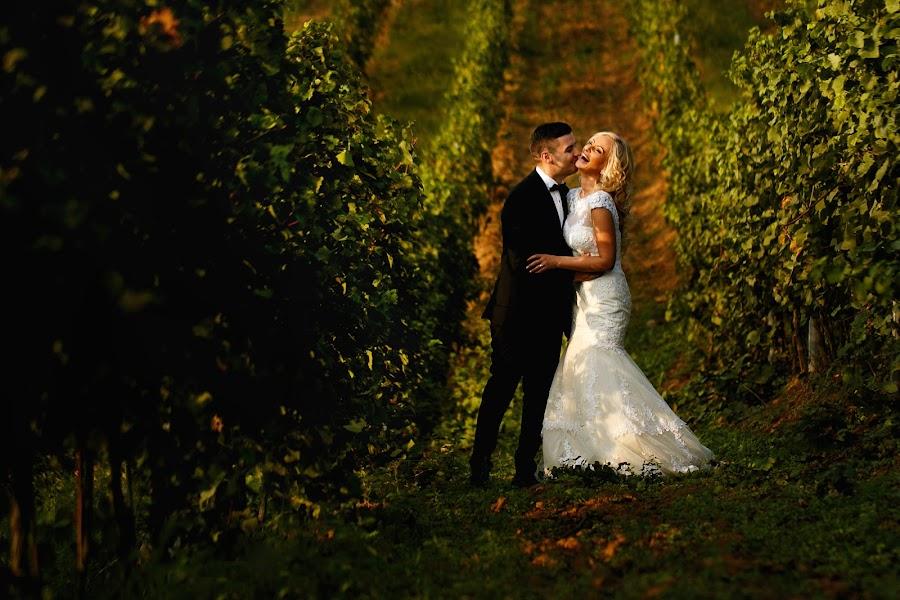 Wedding photographer Sabina Mladin (sabina). Photo of 18.01.2016