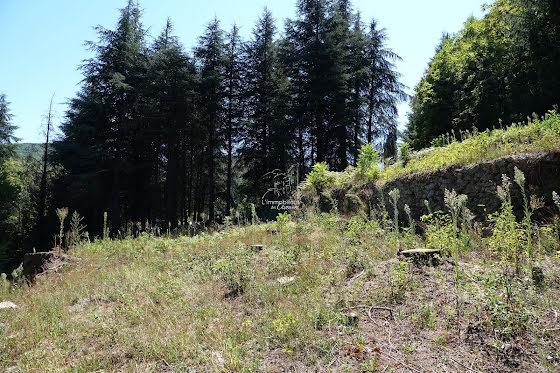 Vente terrain 1310 m2