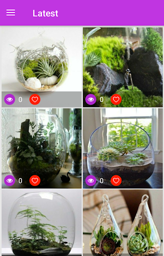 Terrarium Ideas 1.1 screenshots 6
