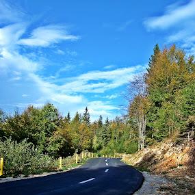 by Bogdan Ene - Landscapes Travel ( clouds, forrest, mountain, blue, road,  )