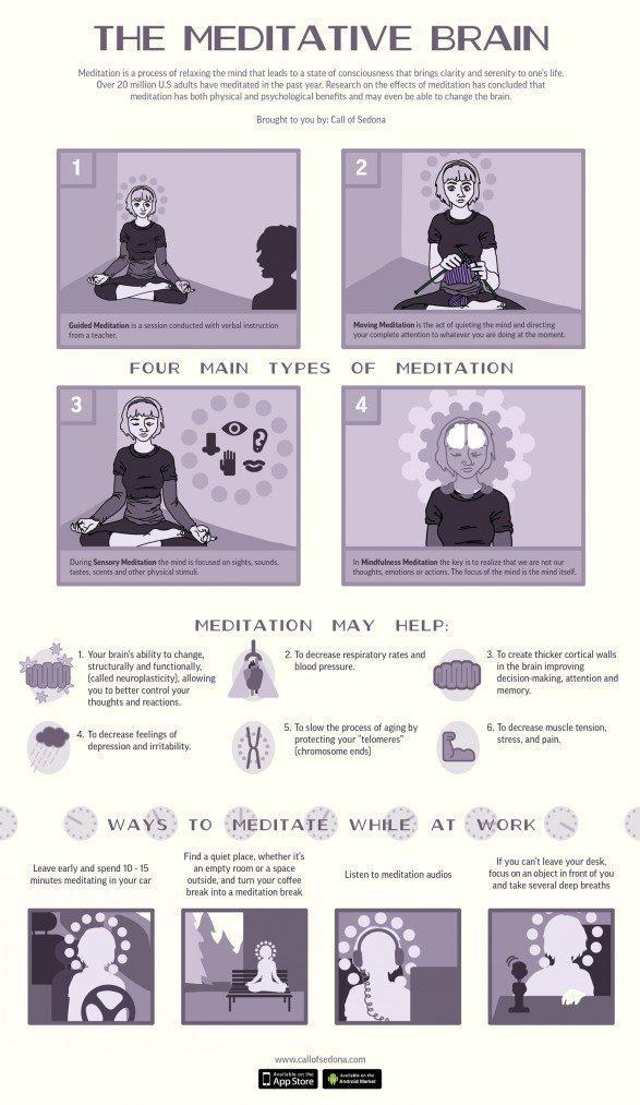 the-meditative-brain