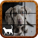Dog Slide Puzzle icon