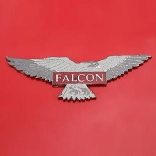 FalconVoice - náhled