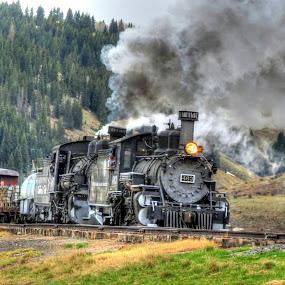 463 close up by Nancy Tharp - Transportation Trains