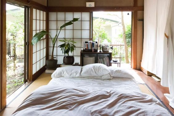 bedroom natural creatures: potted plants at the corner of the room