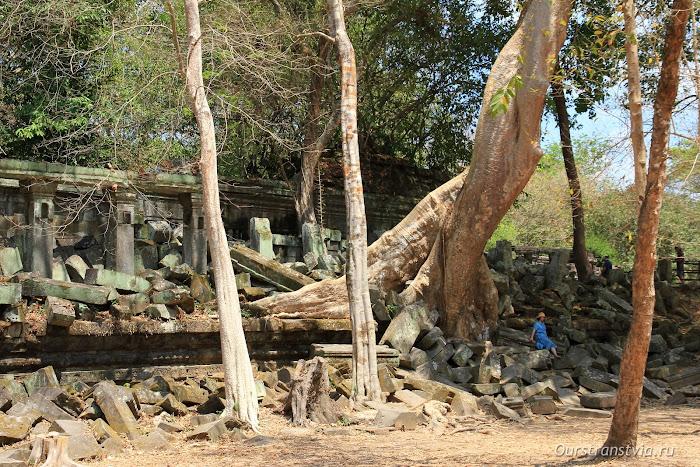 Древние храмы в камбоджийских джунглях