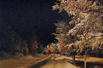 Photo: My street at night