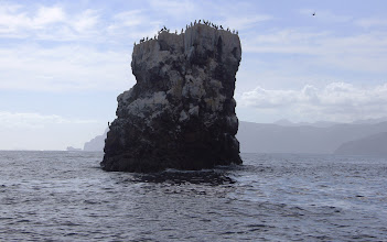 Photo: Boobie rock near Isla San Jose
