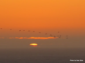 Photo: (Year 2) Day 357 - Sunset on Harris Beach #2