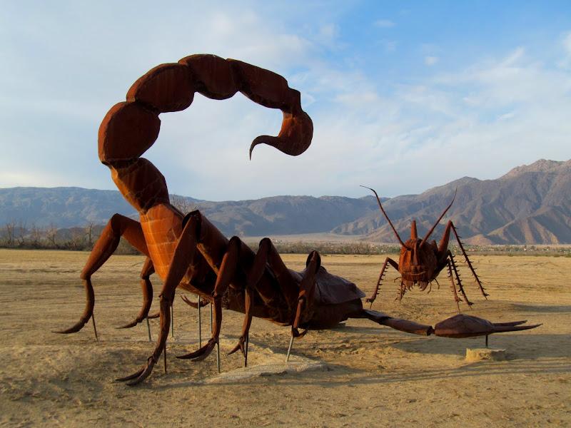 Photo: Scorpion and grashopper