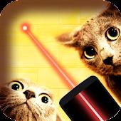 Tải Game Trò chơi laser cho mèo