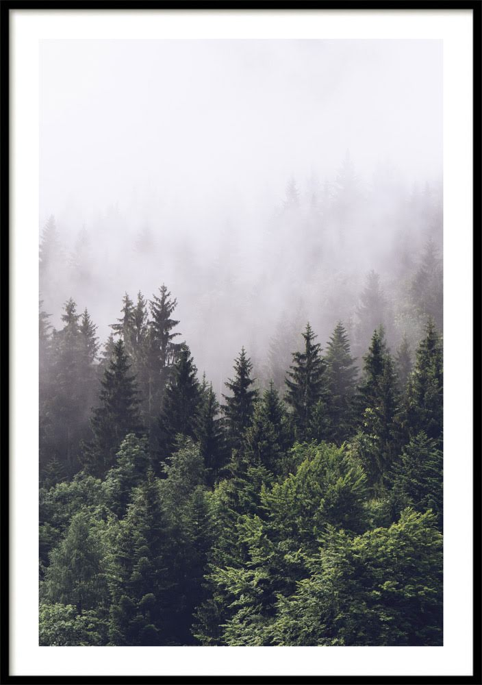 Green Forest Poster