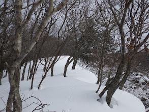右に雪庇(雪にはうさぎの足跡)