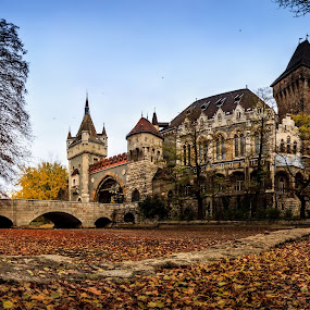 Vajdahunyad Castle by Zoltan Duray - Buildings & Architecture Public & Historical ( eastern europe, vajdahunyad castle, hungary, capital cities, budapest, european culture, europe, landspace, park, architecture, panorama, city, history, color image, autumn, varosliget, castle, vajdahunyad, magyarorszag, bridge, panoramic, culture, hungarian culture, landmark, travel, , garyfonglandscapes, holiday photo contest, photocontest, stitching, landscape, indoor, outdoor, challenge, competiton )